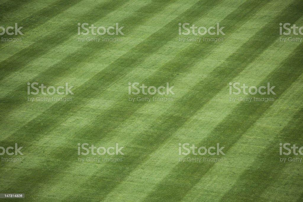 Baseball Stadium Grass stock photo