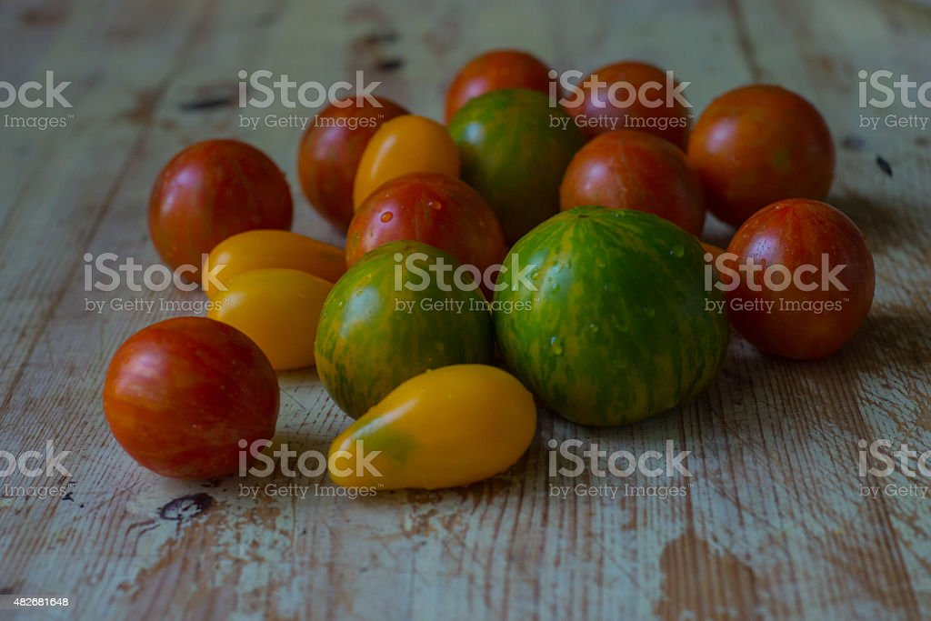 Basic Tomato stock photo