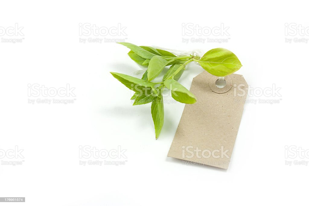 Basilikum und label-tag Lizenzfreies stock-foto
