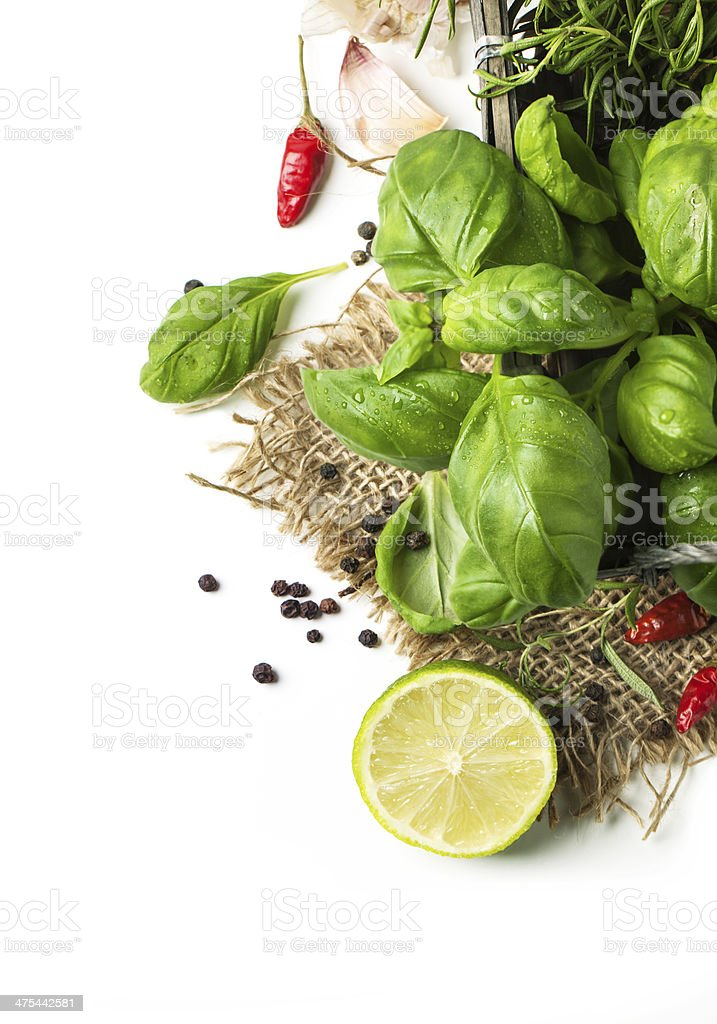basil and lime over white stock photo