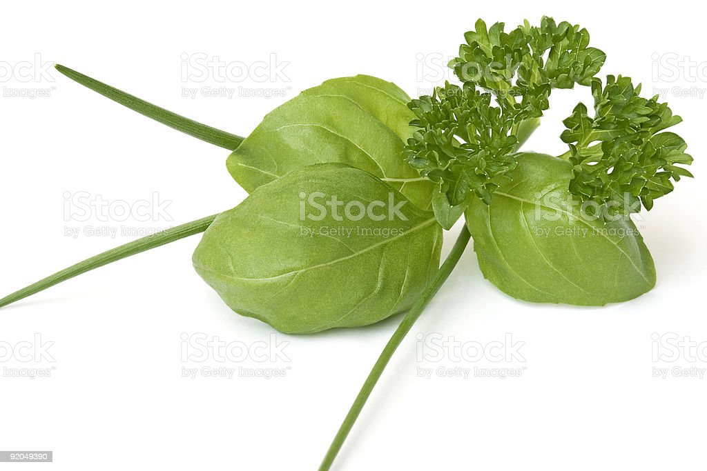 Basil, chives and parsley isolate in white royalty-free stock photo