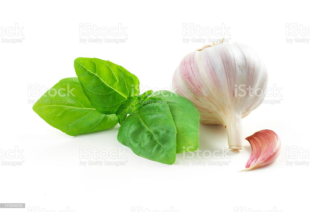 basil leaf and Garlic stock photo