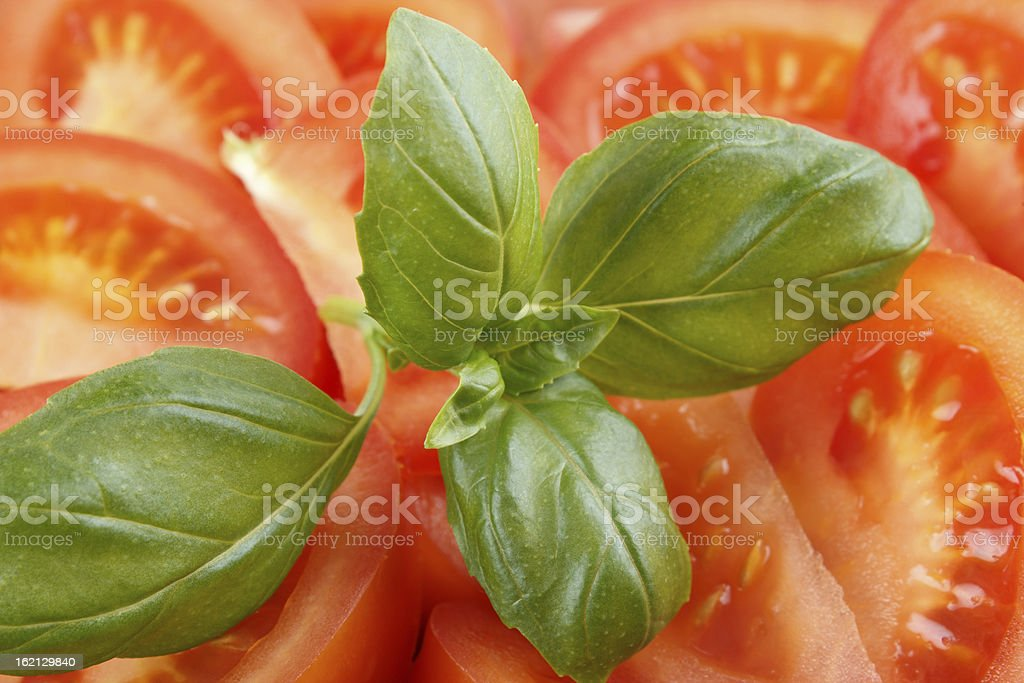 Basil leaf with tomato slices royalty-free stock photo