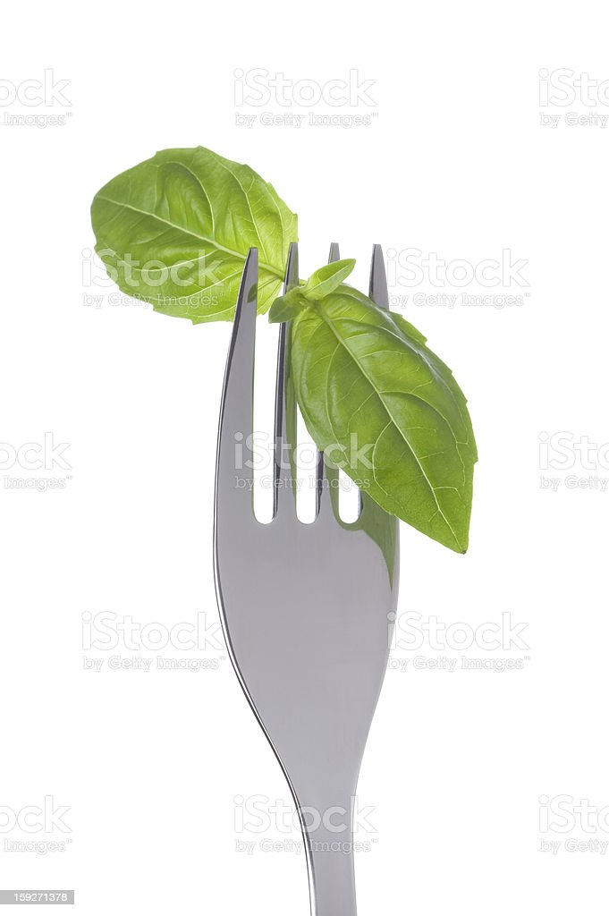 basil leaves on a fork royalty-free stock photo