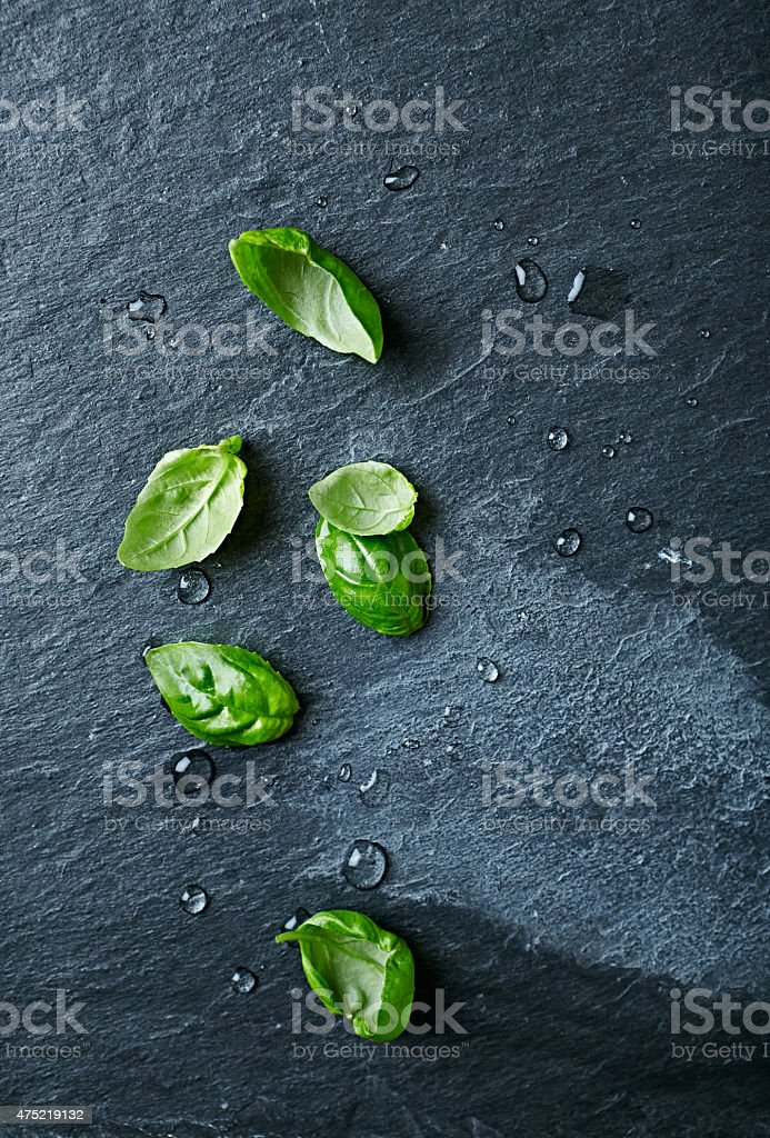 Basil leaves on black slate stock photo