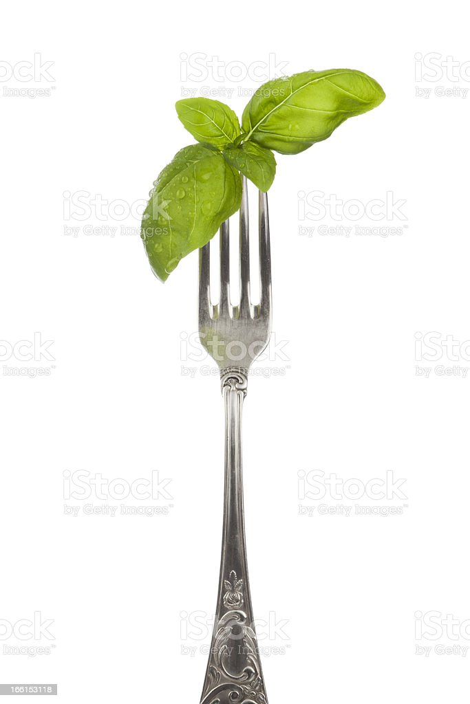 Basil leaves on silver fork royalty-free stock photo