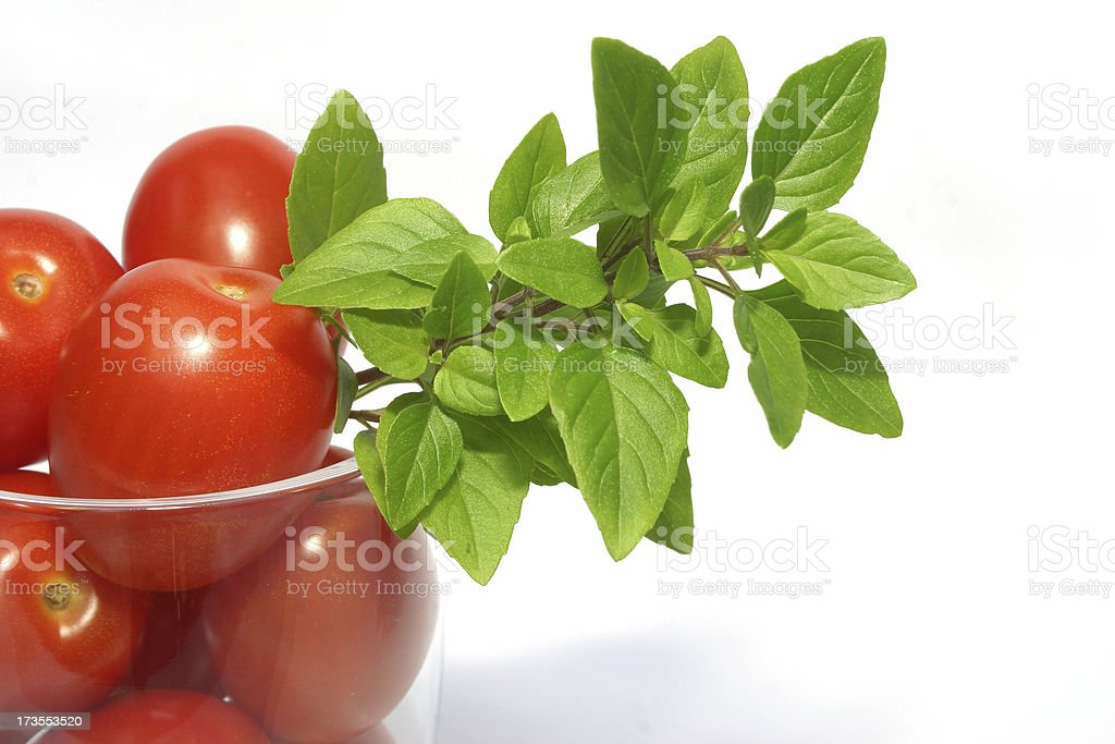 basil mate stock photo