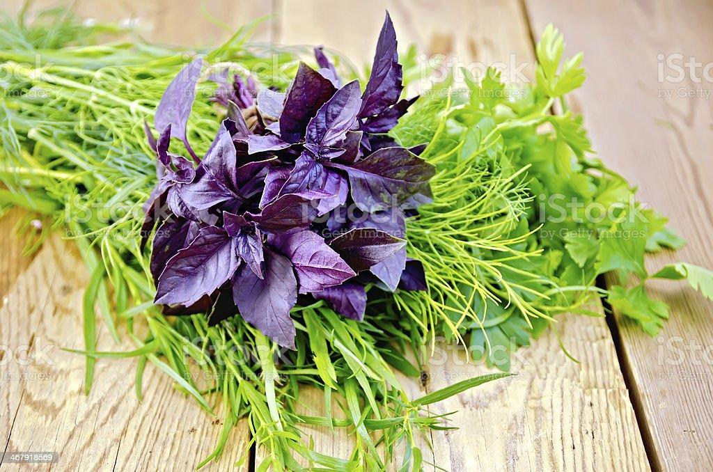Basil purple with tarragon and parsley stock photo