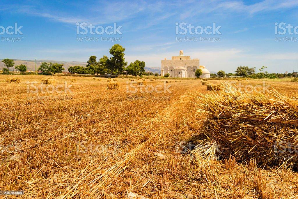 Basilica Siponto (Manfredonia - Gargano) with hay stock photo