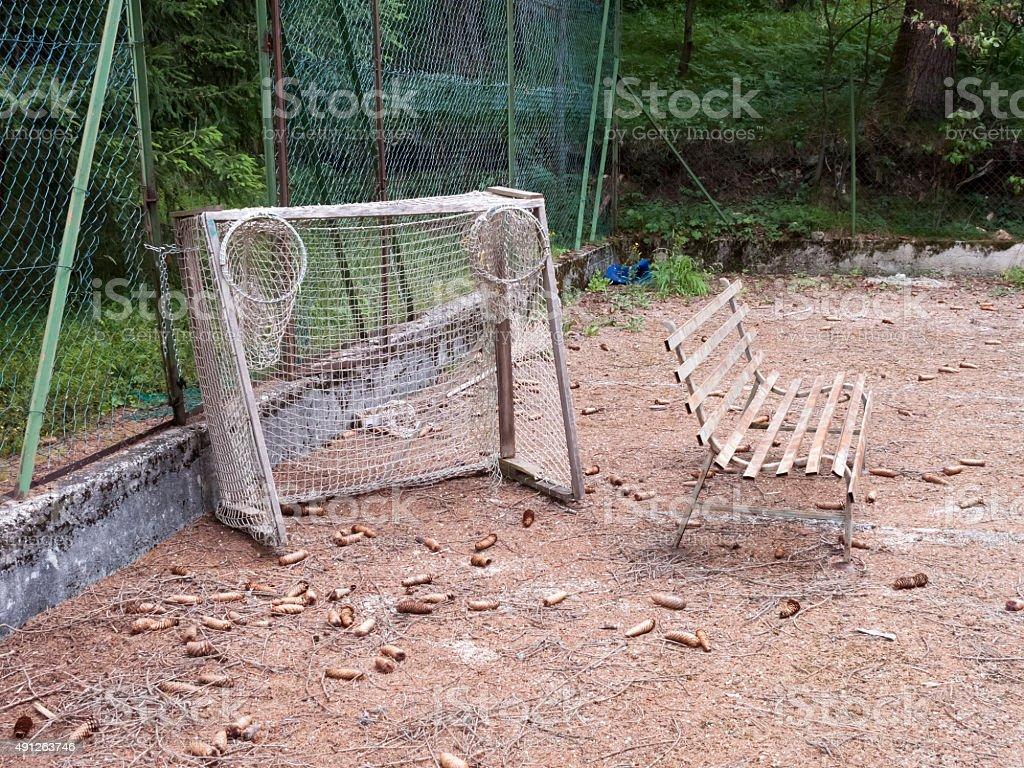 Basket Field stock photo