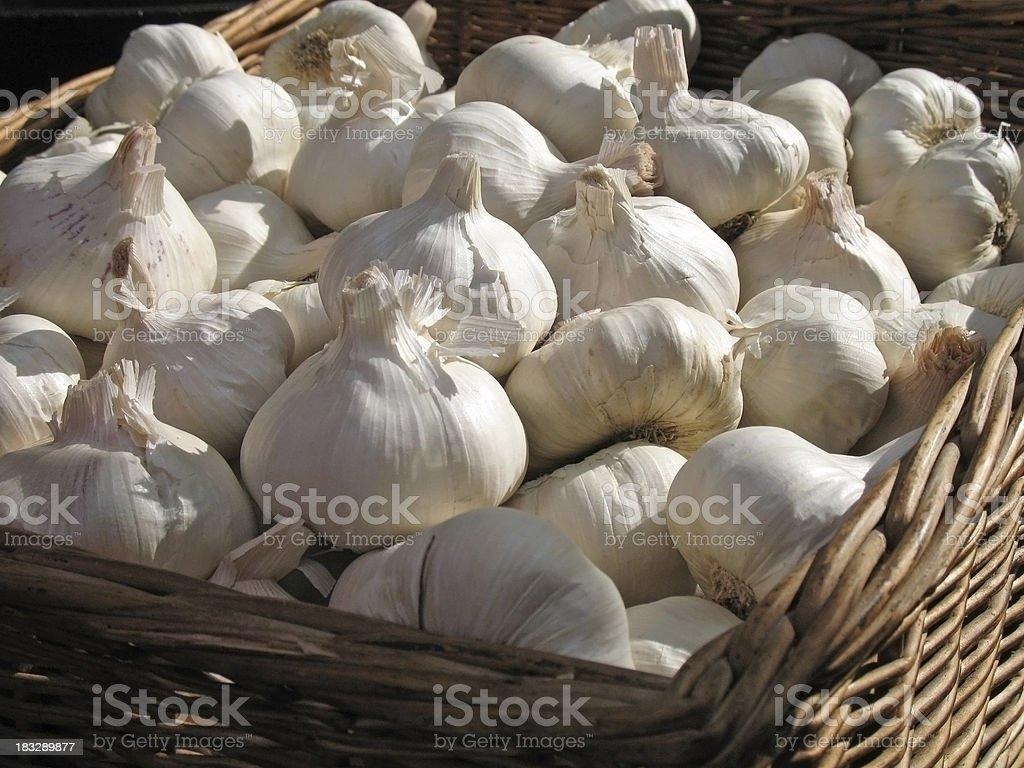Basket full of garlic royalty-free stock photo