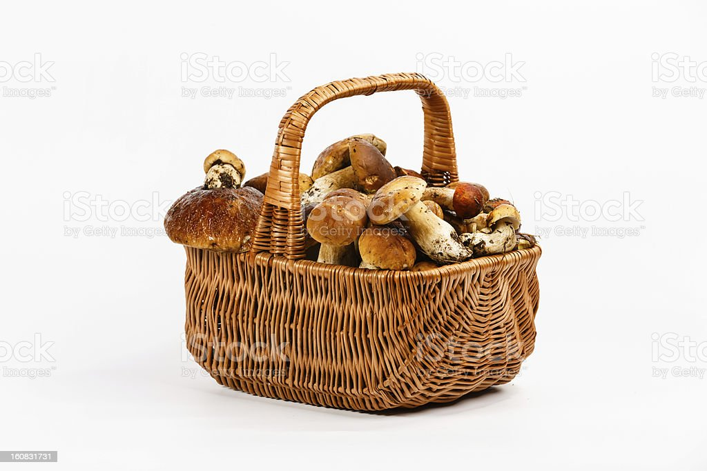 Basket full of mushrooms royalty-free stock photo
