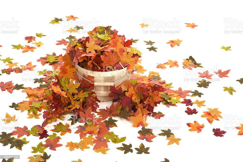 Basket of Autumn Leaves royalty-free stock photo