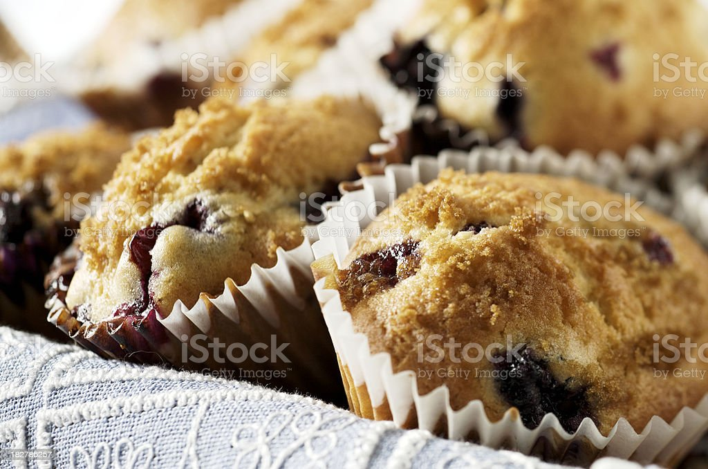 Basket of Blueberry Muffins royalty-free stock photo
