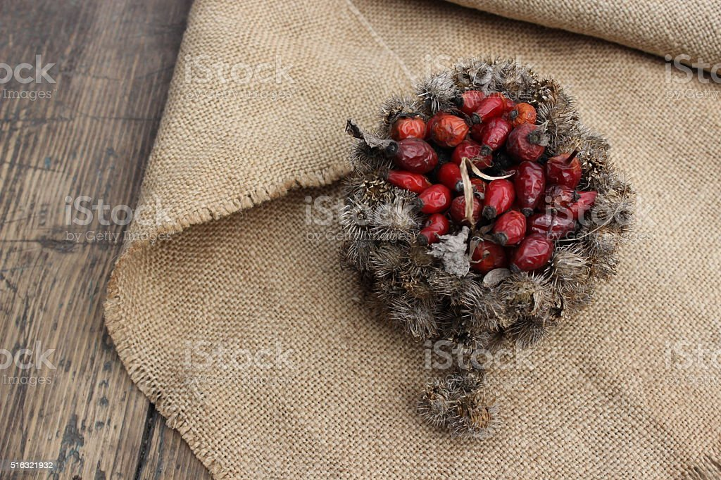Basket of burdock seeds and rose hips stock photo
