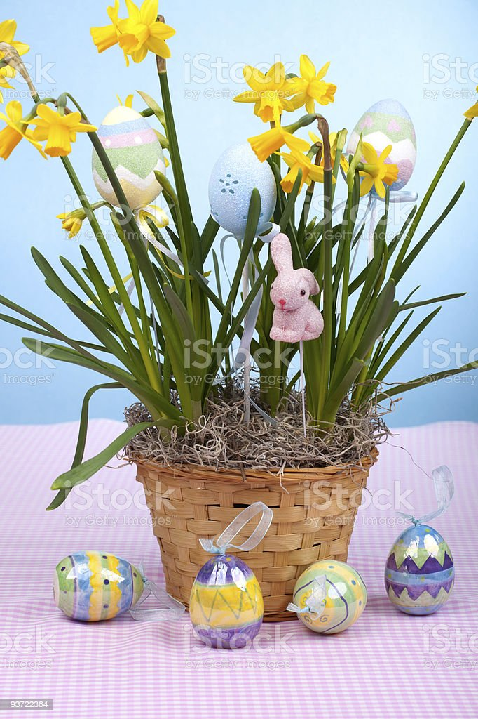 Basket of easter daffodils royalty-free stock photo