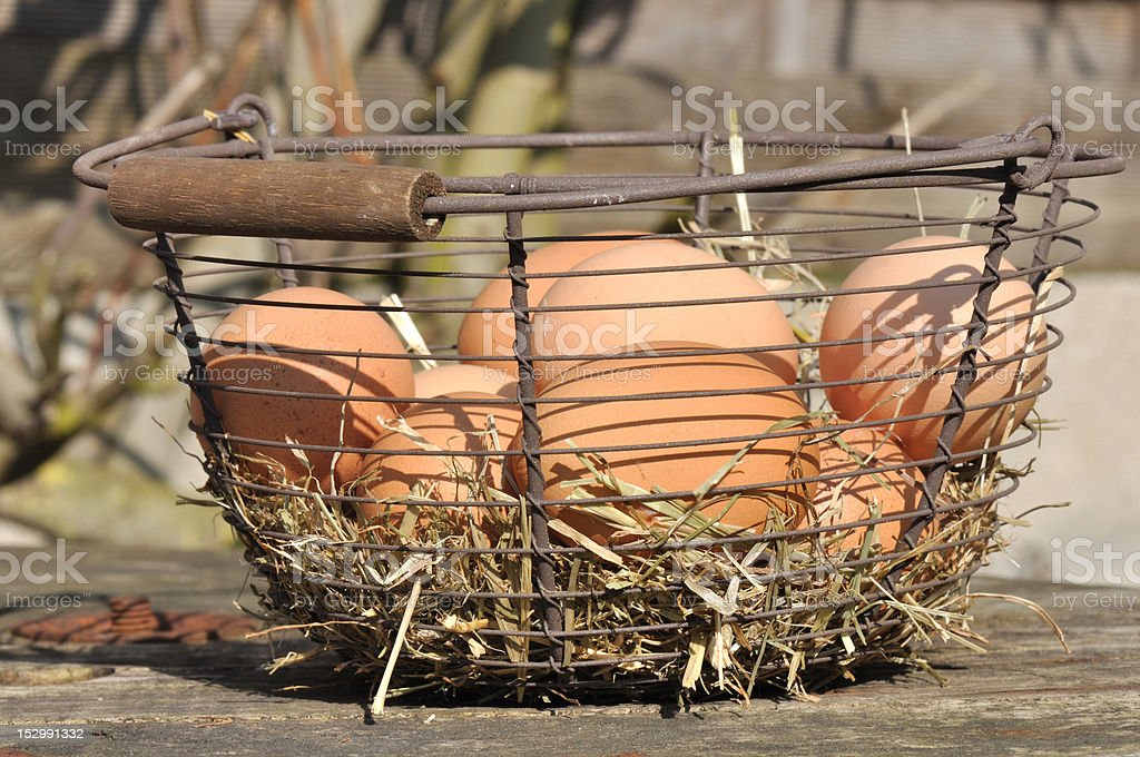 basket of eggs stock photo