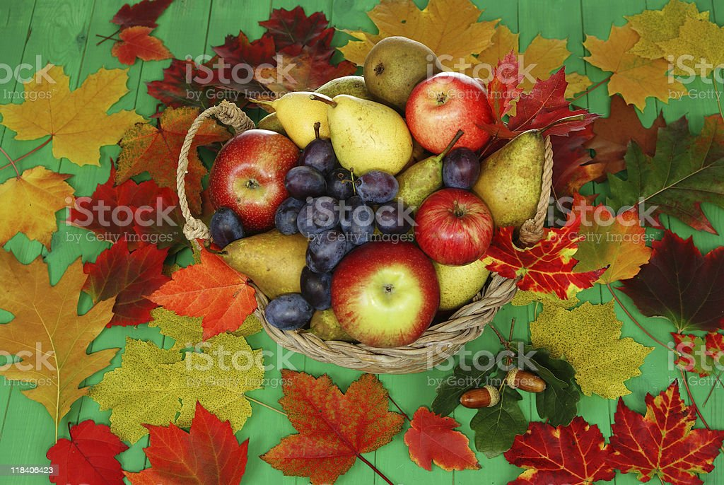 basket of fruit royalty-free stock photo