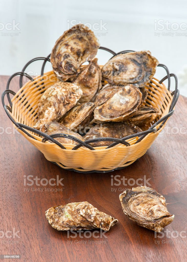 Basket of live oysters on walnut wood table stock photo