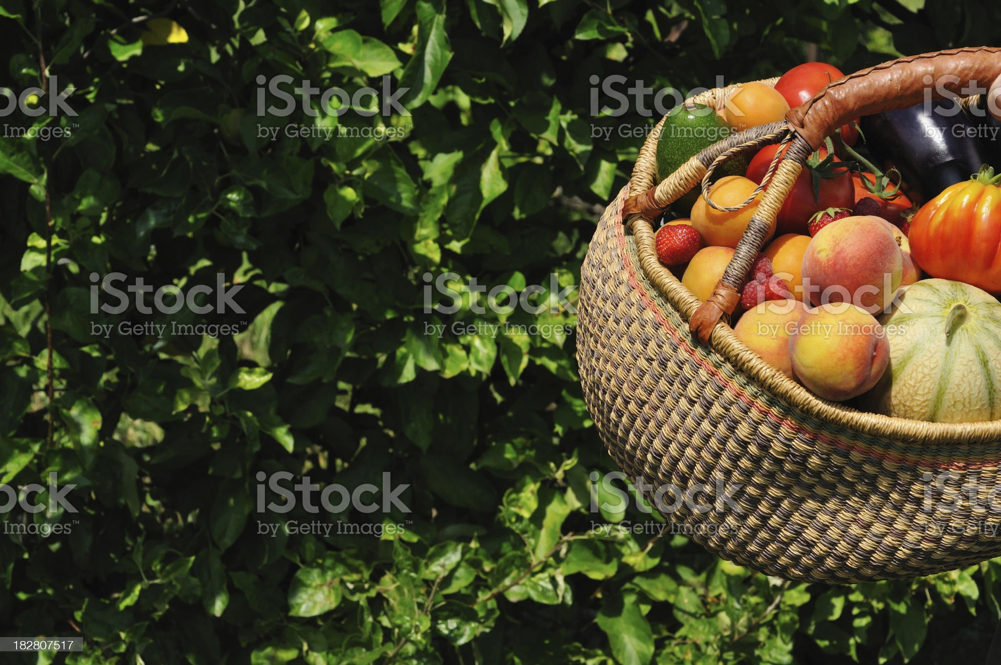 Basket of summer fruit in garden royalty-free stock photo