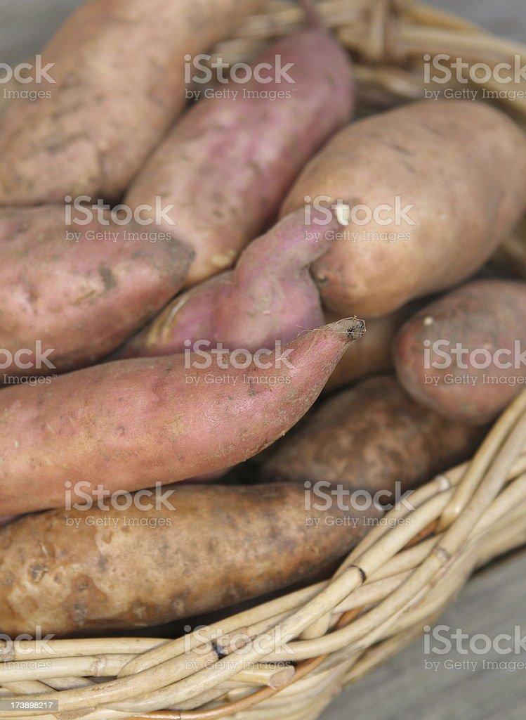 Basket of sweet potato stock photo