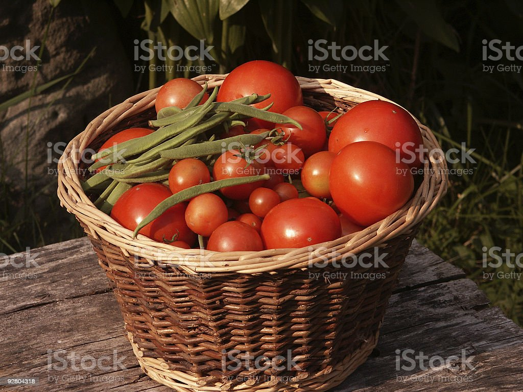 Basket of tomatoes and some beans royalty-free stock photo