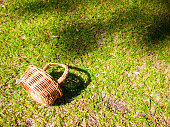 Basket on the grass.