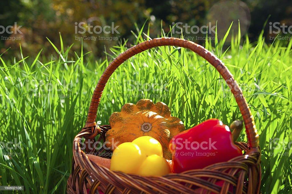 basket qith harvest royalty-free stock photo