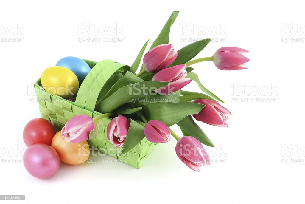 Basket with bunch pink tulips and eggs white background royalty-free stock photo