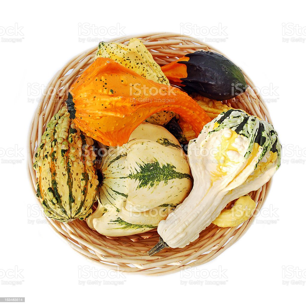 Basket with colorful squashes and pumpkins royalty-free stock photo