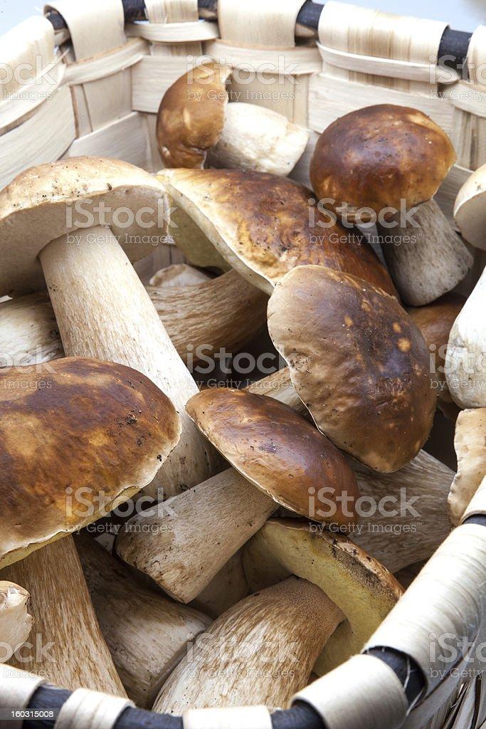 basket with eatable mushrooms royalty-free stock photo