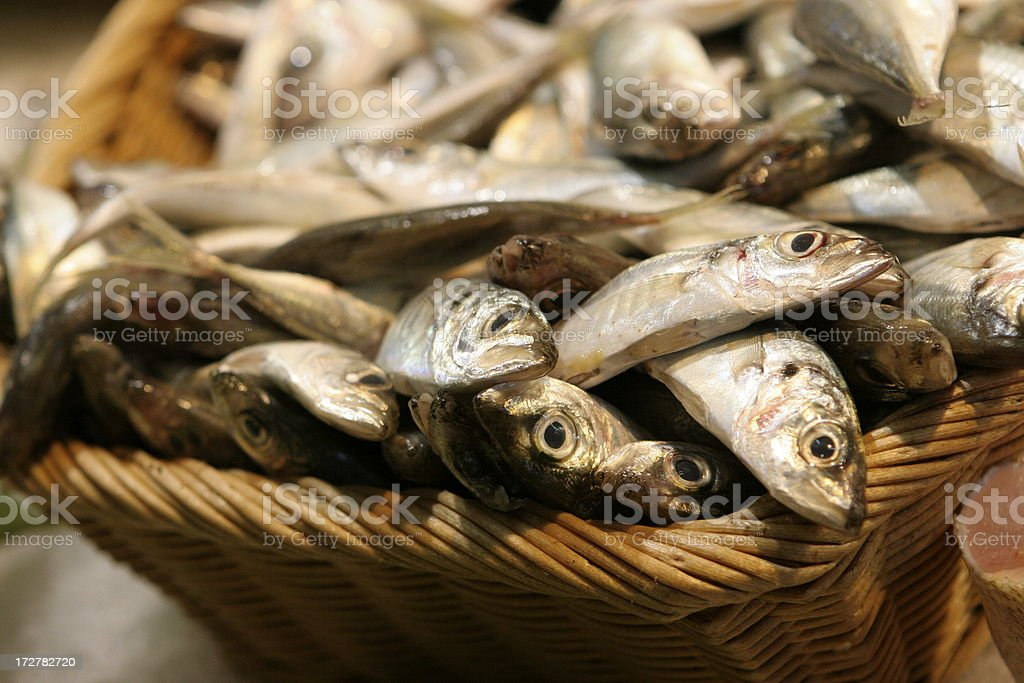 Basket with fish royalty-free stock photo
