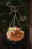 Basket with flowers hanging on a metal pillar