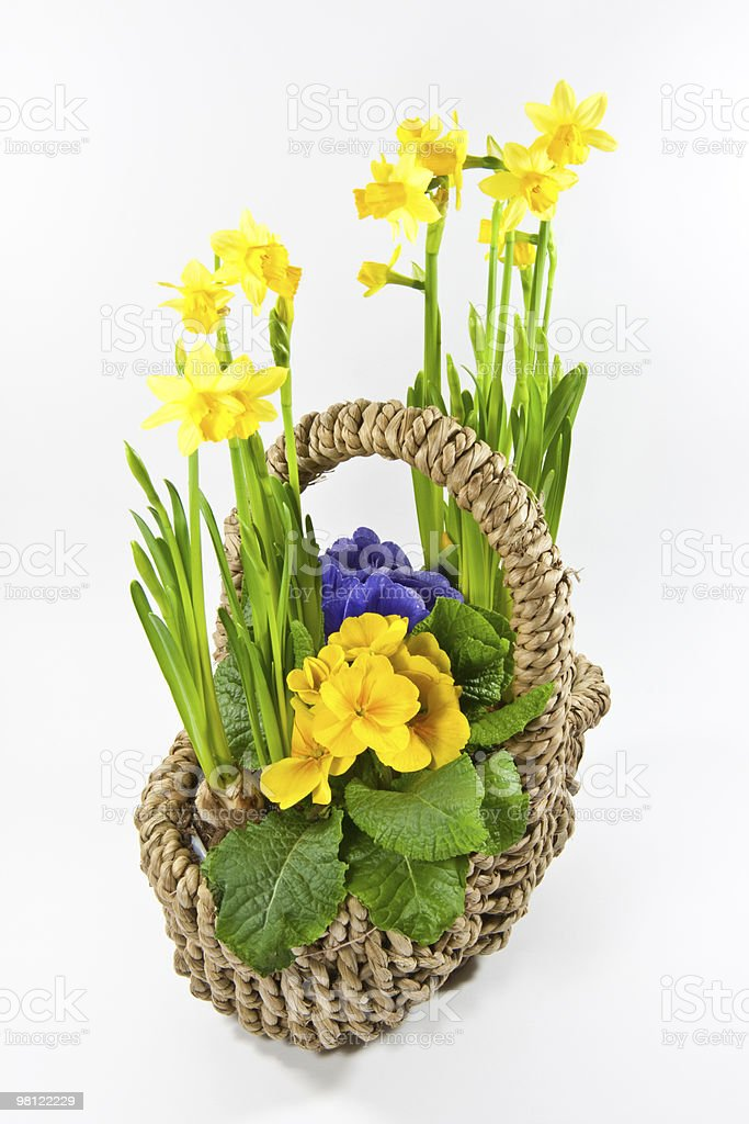 basket with flowers royalty-free stock photo