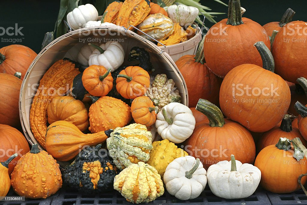 Basket with overflowing pumpkins - autumn background stock photo