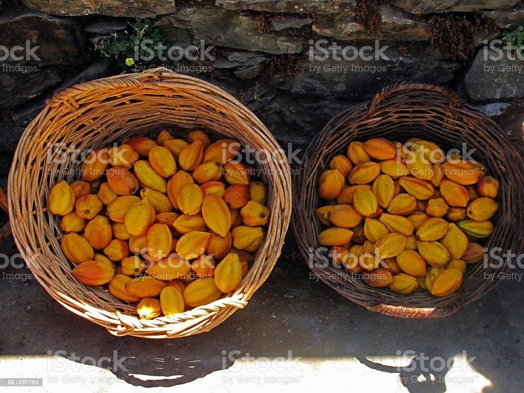 basket with papaya fruit stock photo