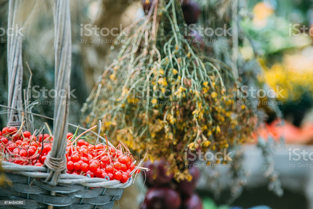 Basket with ripe red viburnum and dried flowers on background stock photo