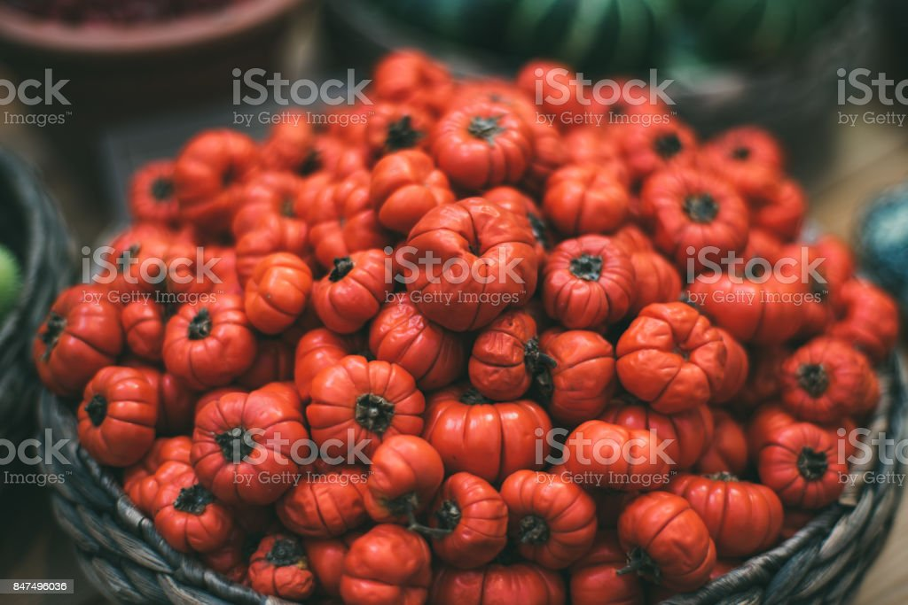 Basket with Solanum aethiopicum stock photo