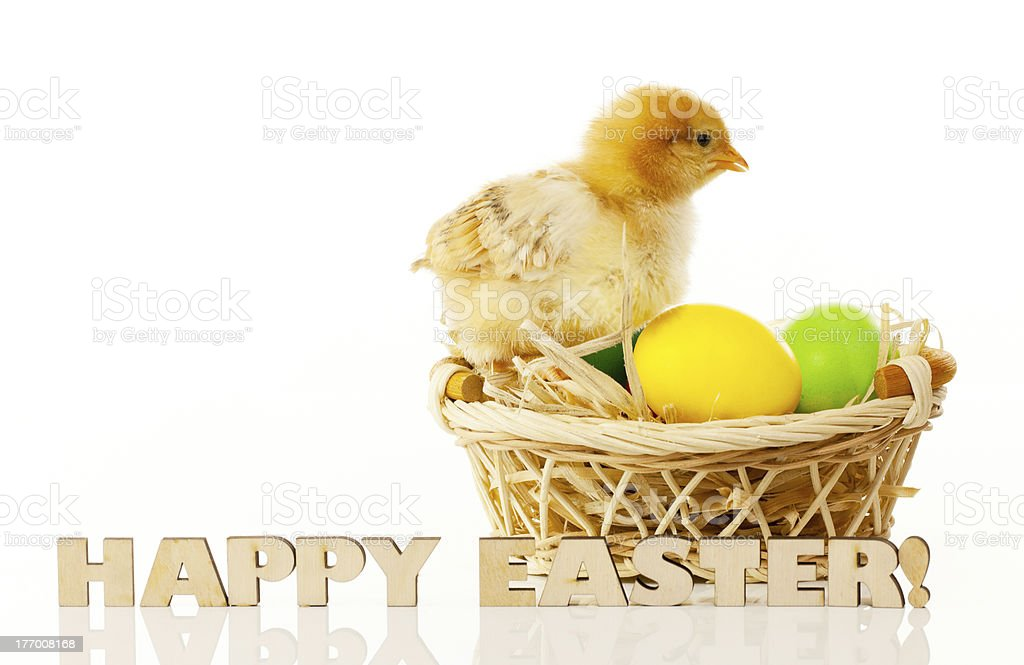 Basket with the Easter eggs and small chicken royalty-free stock photo