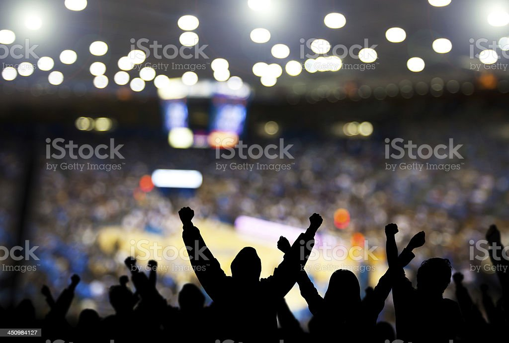 Basketball Excitement royalty-free stock photo