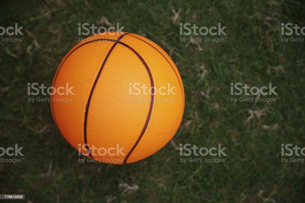 basketball on green grass stock photo