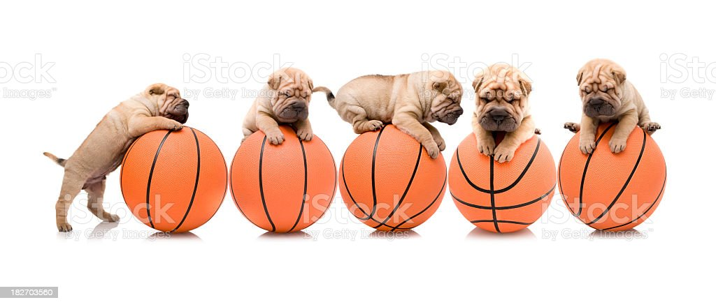 basketball team royalty-free stock photo