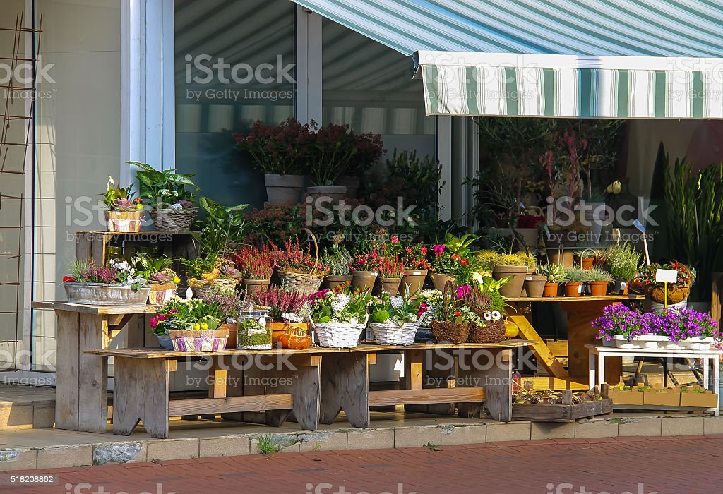 Baskets and pots with plants on the wooden benches stock photo