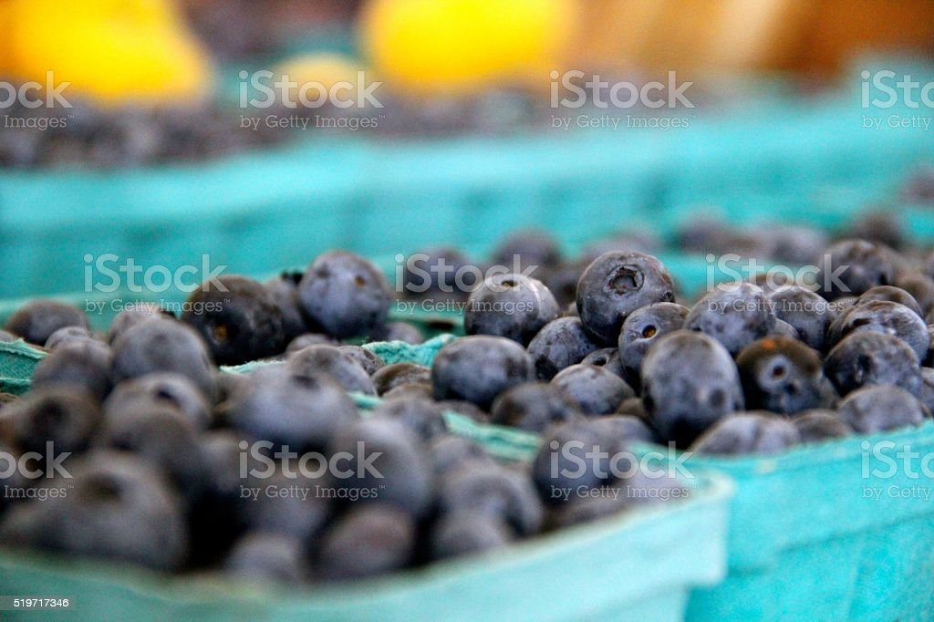 Baskets of Blueberries stock photo