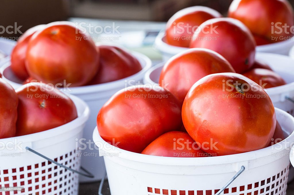Baskets of Ripe Red Tomatos Farmers Market stock photo