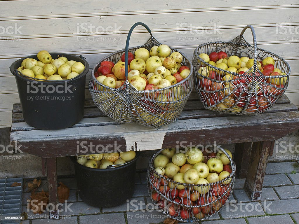 Baskets with apples royalty-free stock photo