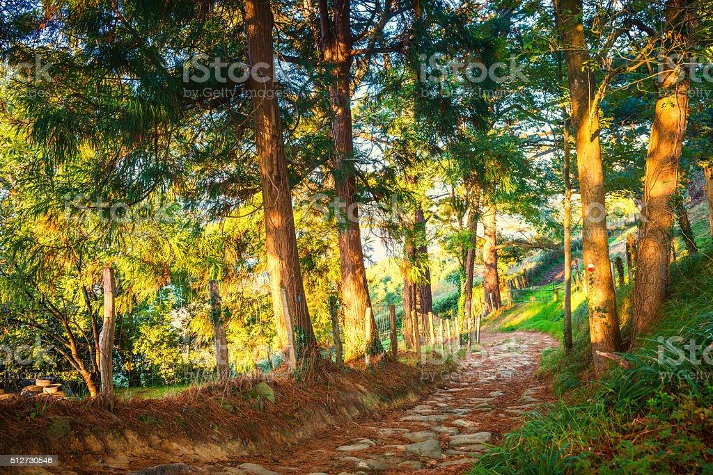 Basque Country Spain Landscape near the Village Orio stock photo