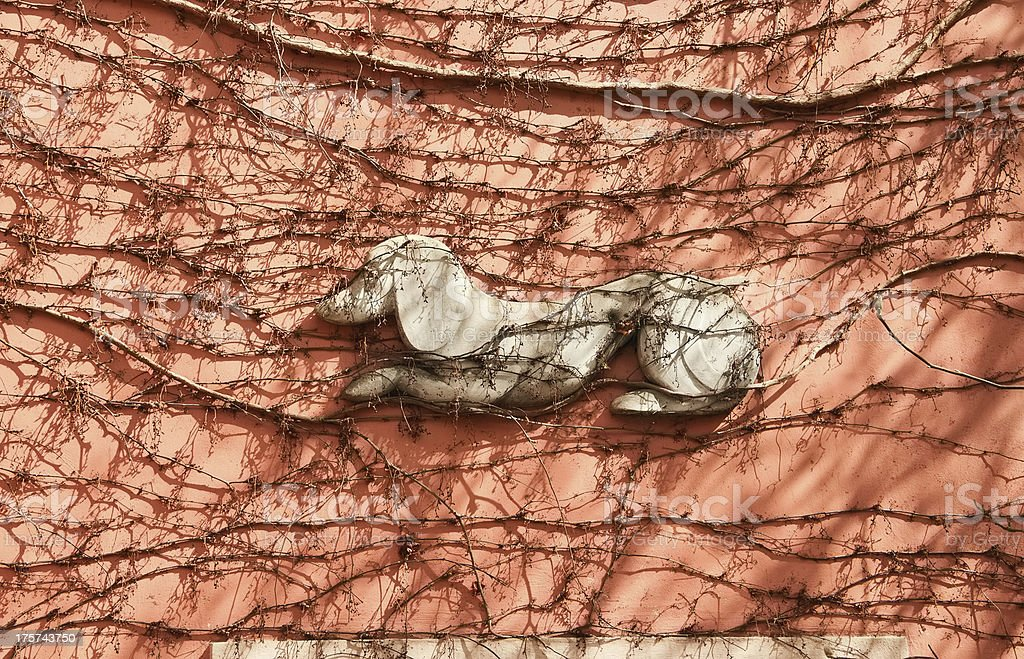 bas-relief of a dog on the grape-covered wall stock photo