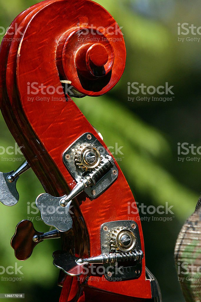 Bass Fiddle - tuning head royalty-free stock photo