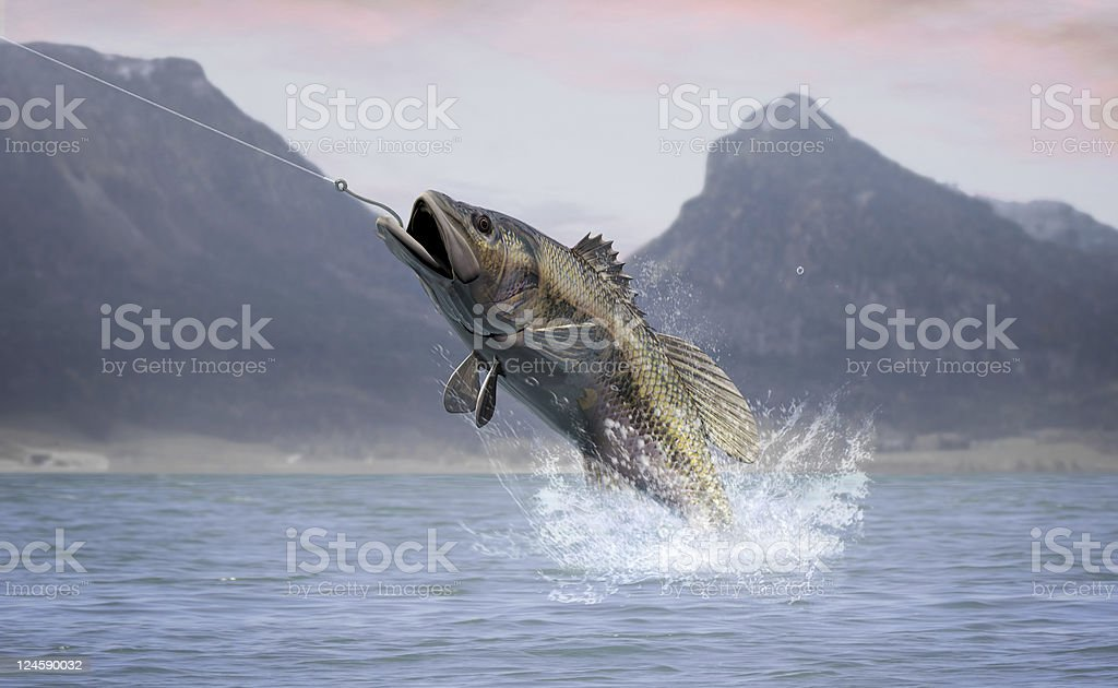 Bass Fishing stock photo